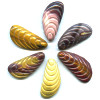 18x38mm Large Mookite Carved SHELL Beads