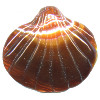 55x63mm Large Red Sardonyx Agate Carved Scallop/Clam SHELL Pendant Bead