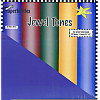 Paperbilities® 12x12 *Jewel Tones* SCRAPBOOK CARD STOCK PAPER Assortment
