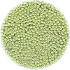 18/o *Vintage* Italian SEED Beads - Opaque Pale Green